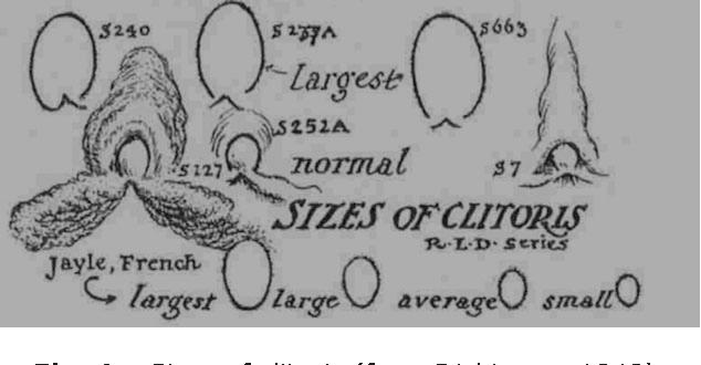 Big female clit anatomy
