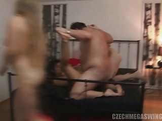 Two czech couples at biggest swingers