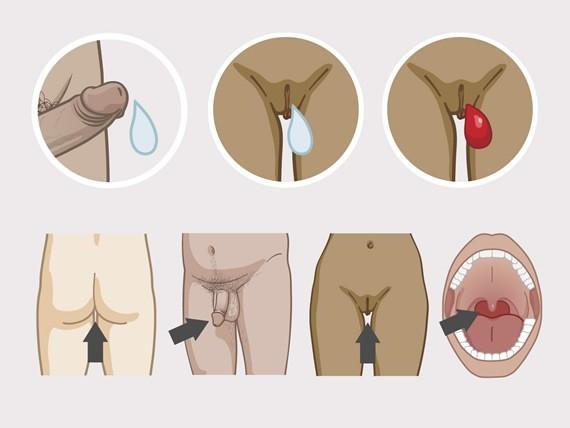 Photo des penis dans l anus
