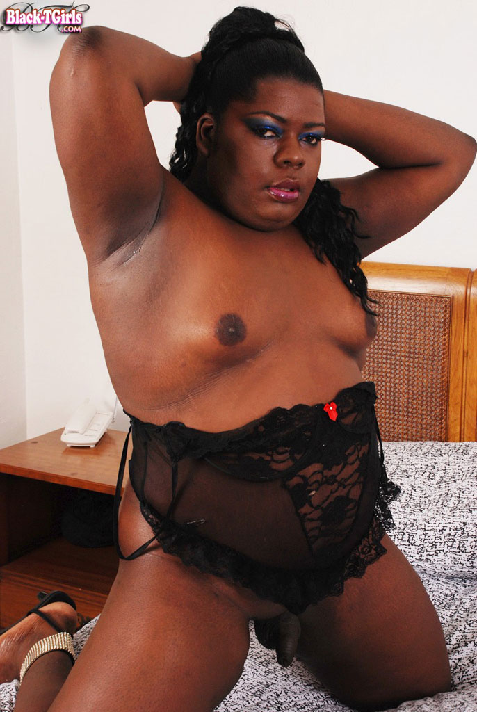 Bbw shemale pics at free shemale porn net
